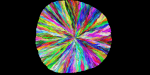 RGB 2048 1 half